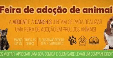 CANIS•ES irá realizar feira de adoção de animais