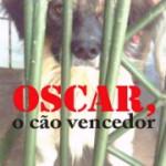 Oscar, o cão vencedor