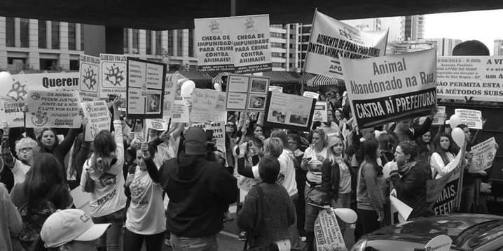 II Manifestação Crueldade Nunca Mais. Av. Paulista, São Paulo, capital
