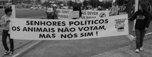 II Manifestação Crueldade Nunca Mais, Guarujá, Litoral de São Paulo