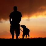 4 razões científicas para adotar um cão