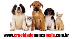 crueldade2