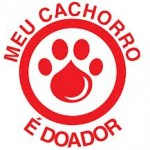 Seu cachorro é doador de sangue?
