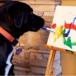 Lucro dos quadros são doados para outros cães