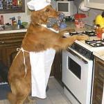 10 acidentes mais comuns na cozinha