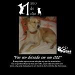 # 3º cão: BRANQUINHA