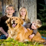 Sua família está preparada para ter um cão?