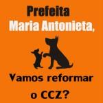 Guarujá irá receber 100 mil reais para os animais