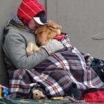 20 razões para ter um cachorro em casa