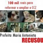 Prefeita de Guarujá recusa R$ 100 mil para o CCZ