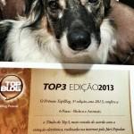 6 Patas fica em 3º no Top Blog Brasil