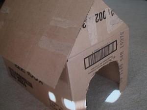 casa de papelao para caes