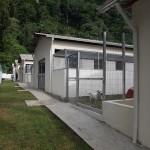 Santos abre Centro de Adoção Animal