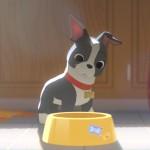 Curta da Disney terá um cão como protagonista