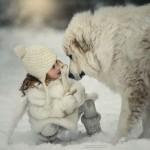 Fotos de bebês e cães para votar e se apaixonar