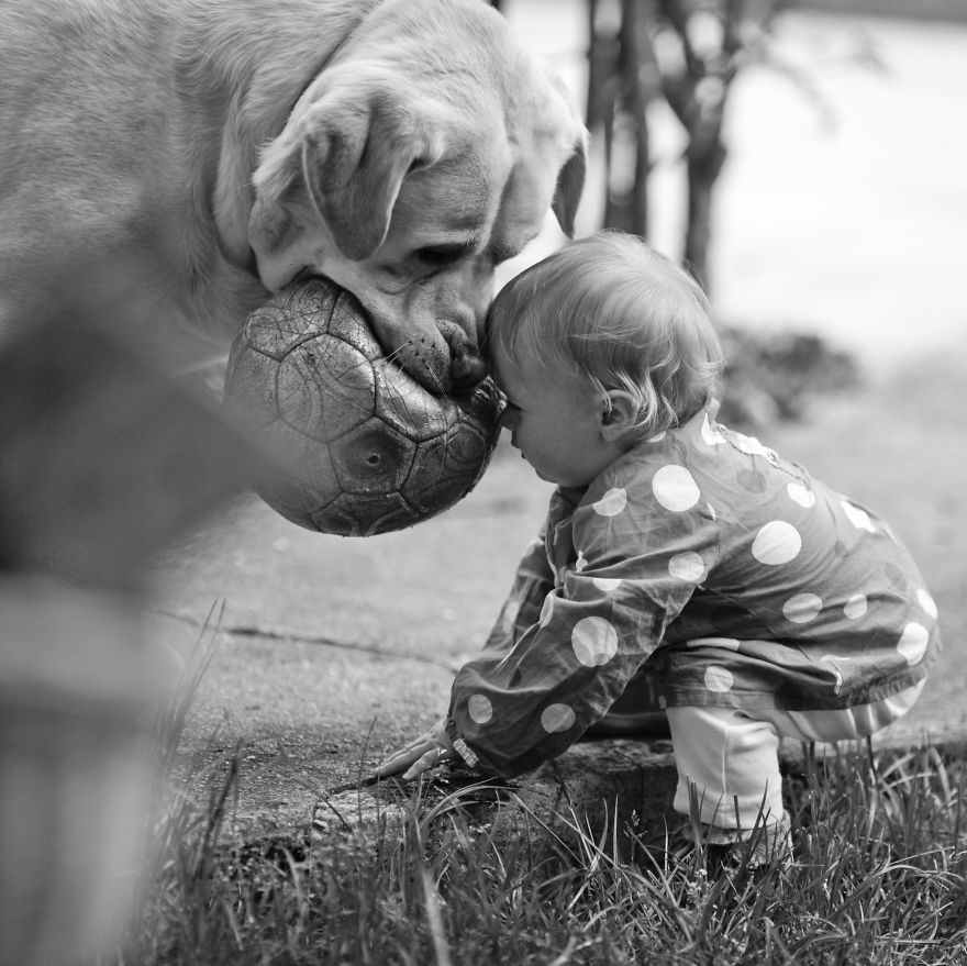small-babies-children-big-dogs-10