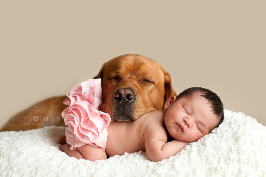 small-babies-children-big-dogs-15