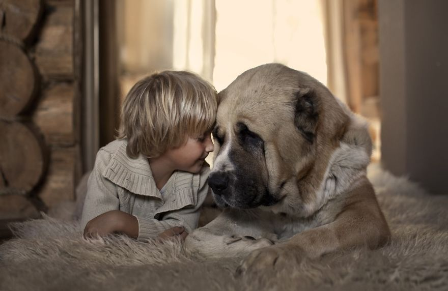 small-babies-children-big-dogs-4