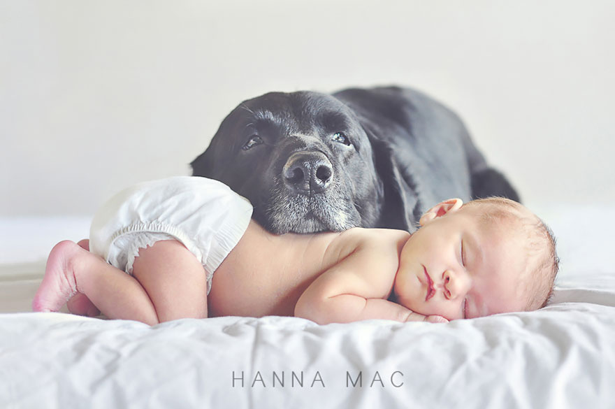 small-babies-children-big-dogs-7
