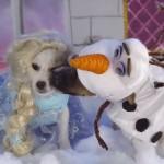 Cães gravam cenas clássicas da Disney