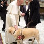 Papa diz que cachorros vão para o céu
