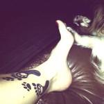 Cães adotados e seus tutores tatuados