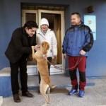 Enfermeira espanhola que teve ebola adota outro cão