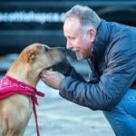 Cão abandonado em estação de trem é adotado