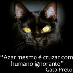 Recado do gato preto