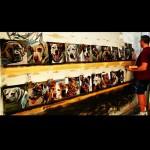 Artista homenageia 5.500 cachorros mortos