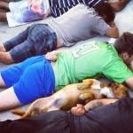 Cão se deita com suspeitos em abordagem policial