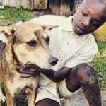 Cadela salva bebê abandonada