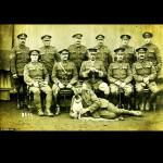 Fotos inéditas dos cães da Primeira Guerra Mundial