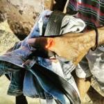 Homem é detido depois de atear fogo em cão