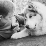 Últimos momentos de cães com doenças terminais