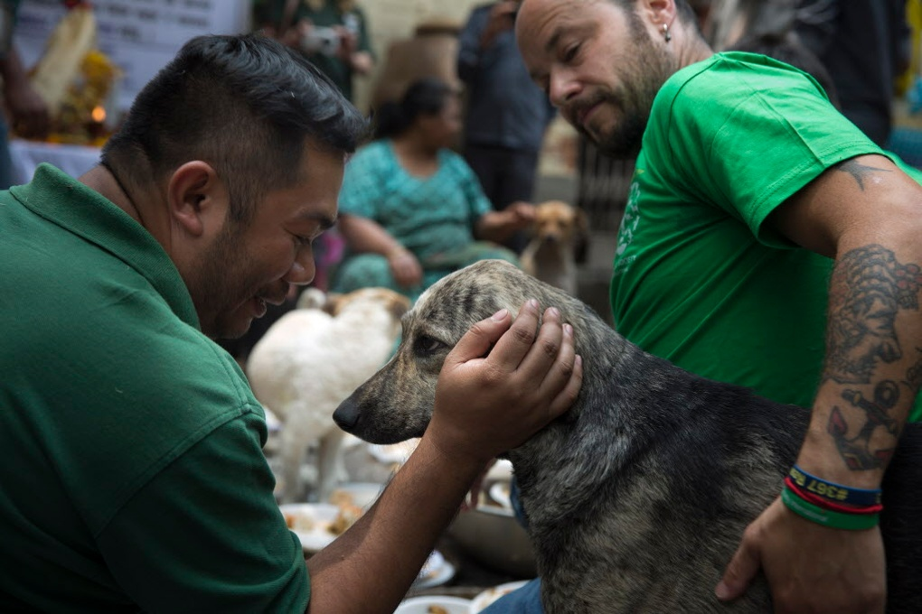 "KHATMANDU, NEPAL-- May 7, 2015--Dr. Rey del Napoles, left, a vet with HSI Philippines and Adam Parascandola of the Humane Society International attended a memorial and free lunch for street dogs organized by Gyanu Devla, known as ""Dog Mother"" and her supporters in remembrance of the dogs who died in the earthquake 13 days ago. PHOTO BY JODI HILTON"