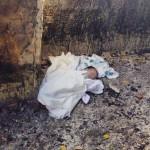 Cão encontra recém-nascido em terreno baldio