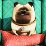 """Assista ao trailer """"Pets – A Vida Secreta dos Bichos"""""""