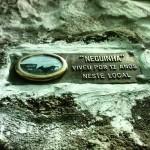 Cadela de rua recebe homenagem após a morte