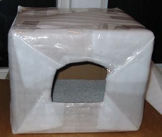 c27ac-catshelterboxstyrofoamforblogger
