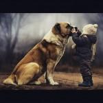 Carta do seu cão a você