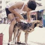Tailandês dá banhos em cães de rua