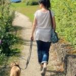 Seu cão puxa muito na hora de passear?
