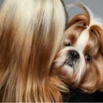 Por que cães se parecem com seus donos?