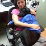 Depoimento de um adotante de cão grande