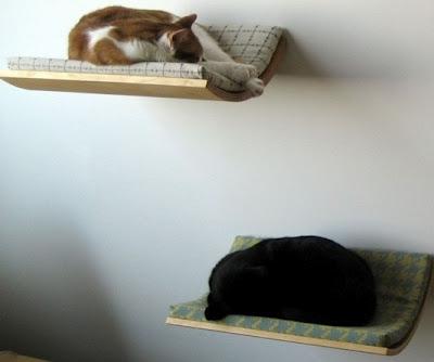 casa-gato-criativa-10