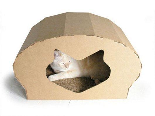 casa-gato-criativa-9