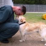 Detentos adestram cães que seriam sacrificados por comportamento violento