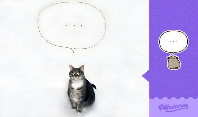 gato-recria-emoji-6