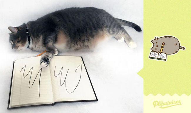 gato-recria-emoji-9